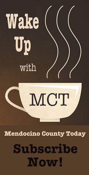 mct-ad-300