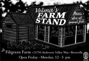 farmstand-new