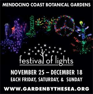 gardens-festival-lights-ad