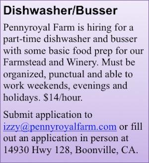 dish-bus-pennyroyal-ad