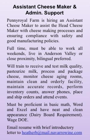 asst-cheesemaker-ad