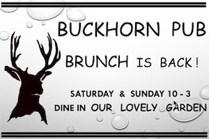 ad Buckhorn brunch