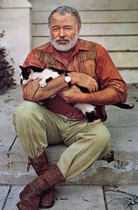 HemingwaysCat
