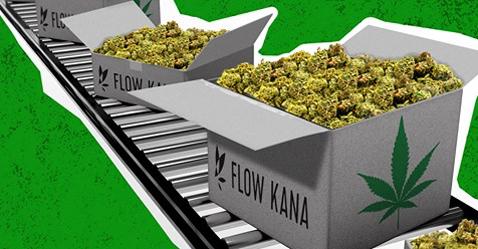 FlowKanaLine