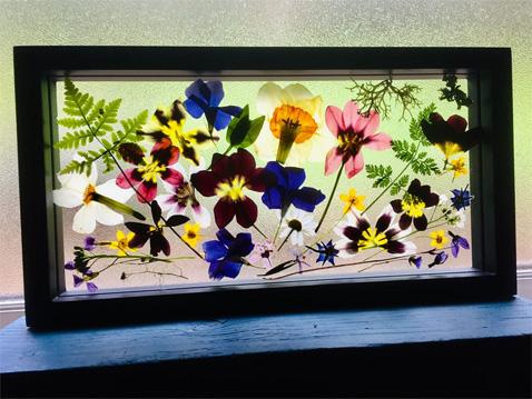 WildflowerShow1