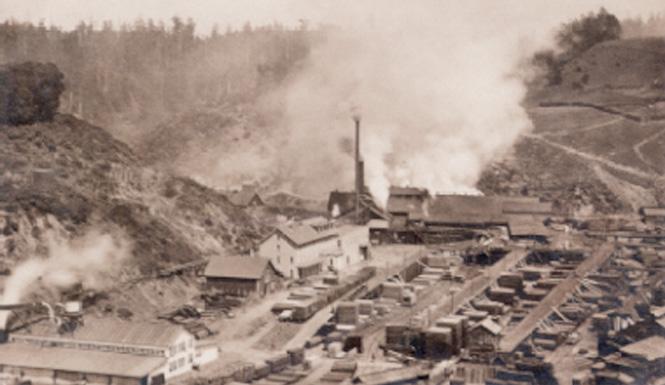 Albion1895