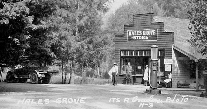 HalesGroveStore