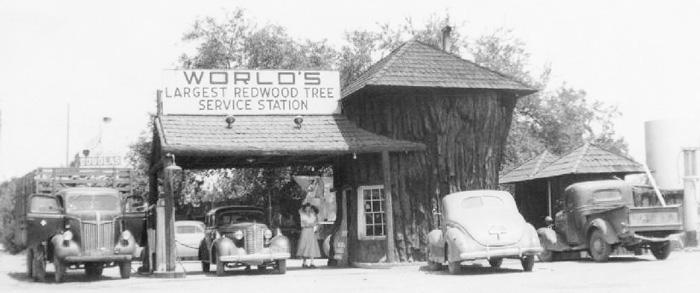 RedwoodTreeStation2r