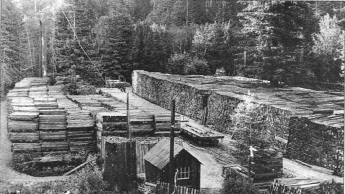 Wendling1926