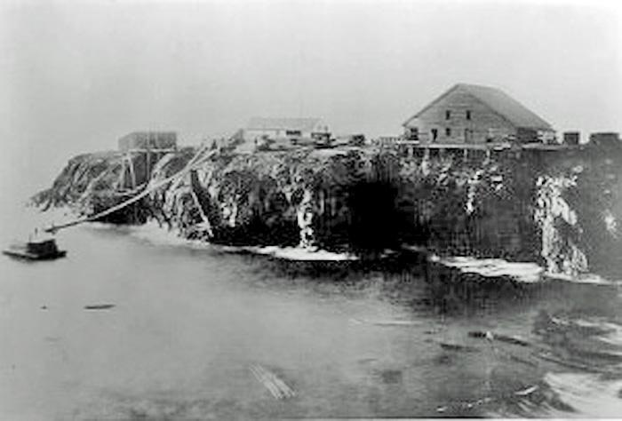 FirstSawmillMendocino1872