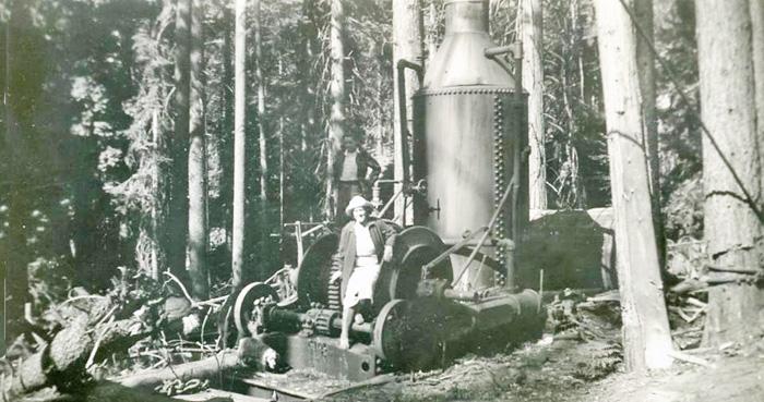 LoggingMachineMendoForest